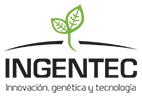 SEMILLAS INGENTEC Logo